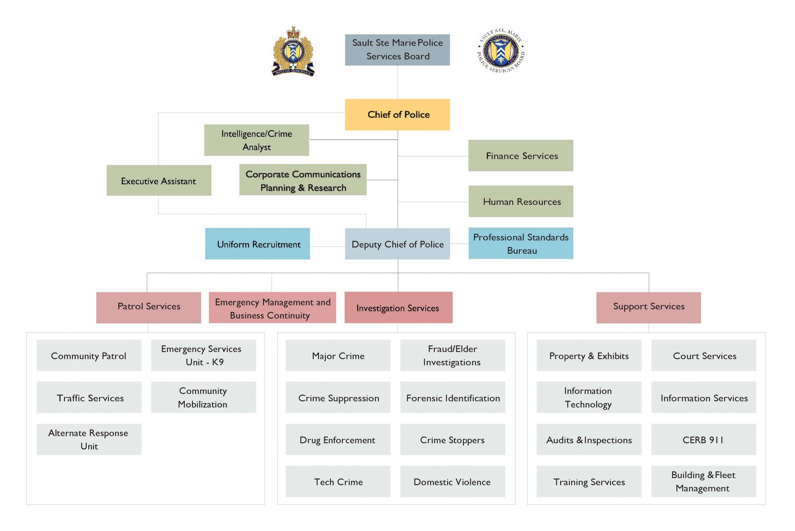 Organization Chart - Revised June 29, 2020